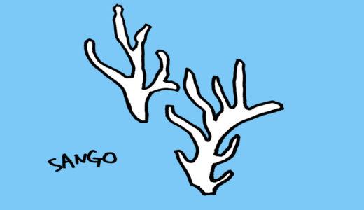 今度は挫折しないために、WordPressのテーマ「SANGO」を入れたよ。